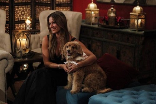 Juan Pablo competes with a dog for Bachelorette's attention